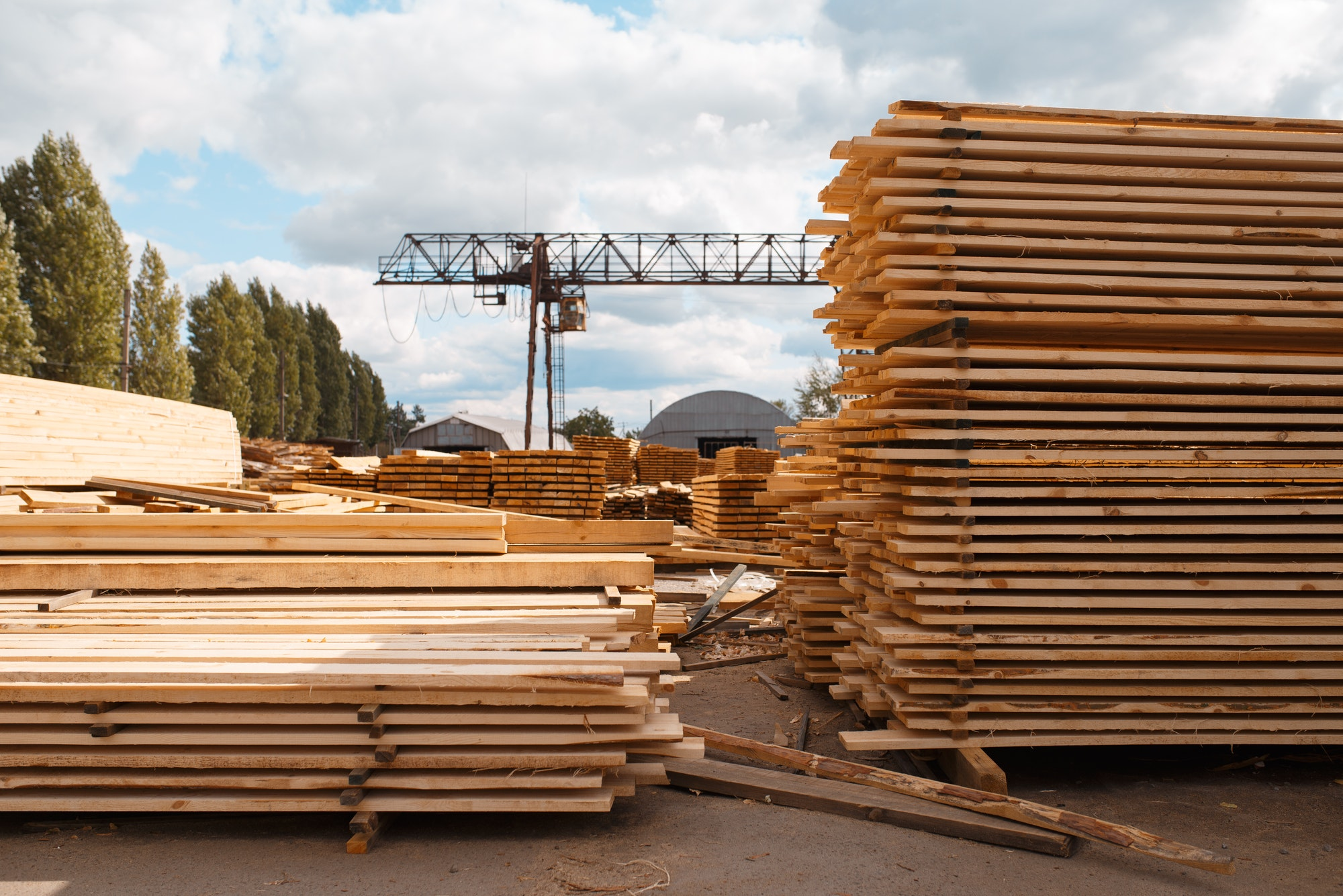 Stacks of boards on timber mill warehouse